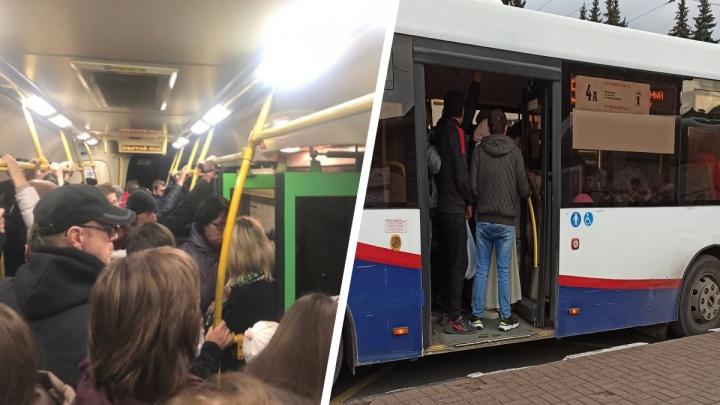 «Вымирают по выходным»: ярославцы назвали номера автобусов, которых не дождаться
