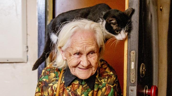 Села бабушке на шею: в Ярославле кошка прославила 84-летнюю хозяйку