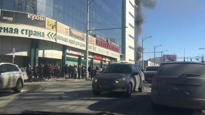 В МЧС назвали площадь пожара в ТЦ «Скала»