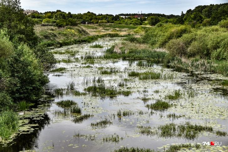 Воды в этом году очень мало. При этом в районе Муслюмово Теча еще хилее