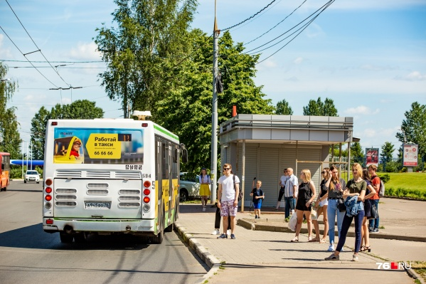 В Ярославле осенью появится новый автобус