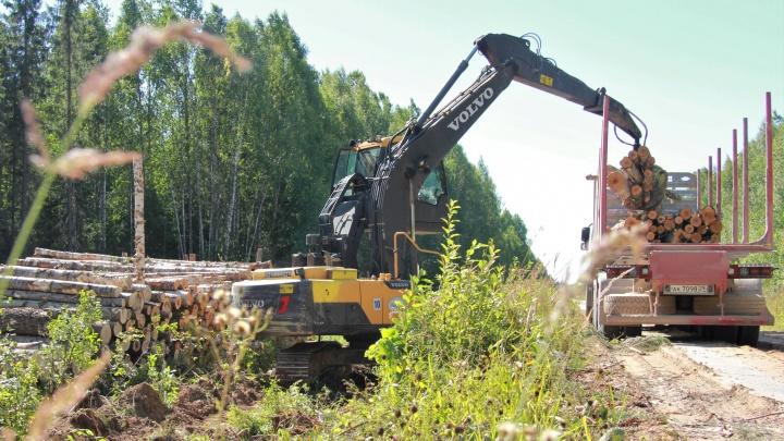 Лесопромышленники помогут обеспечить жителей Мезенского района дровами