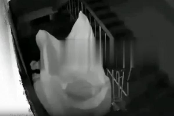 Очередная выходка преследователя попала на камеру видеонаблюдения: мужчина накрылся простыней и бродит в подъезде