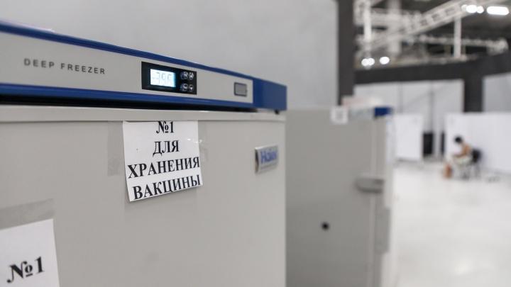 На всех желающих не хватит: в Волгоградскую область привезли вакцину «Спутник Лайт»