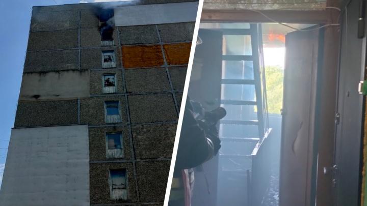 Эвакуировали десятки человек: в Ярославле произошел пожар в многоэтажке