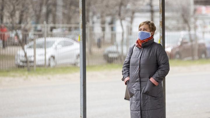 «Пойдут в торговые центры заразу разносить»: ярославцы раскритиковали указ президента о нерабочих днях