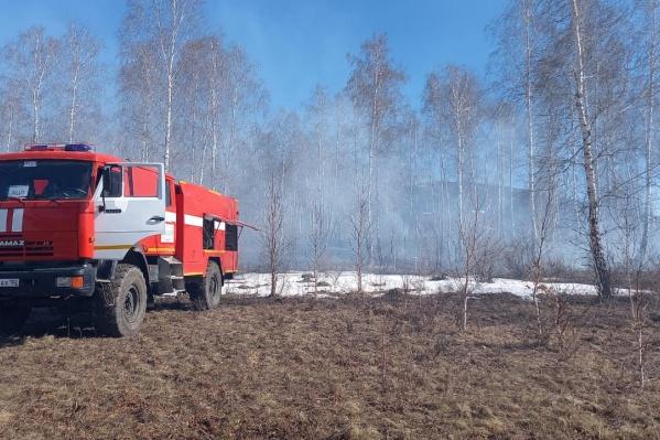 Глава Башкирии предупредил об опасности лесных пожаров