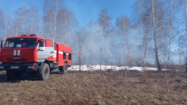 Костры не разводить, мусор не жечь: в Башкирии ввели особый противопожарный режим