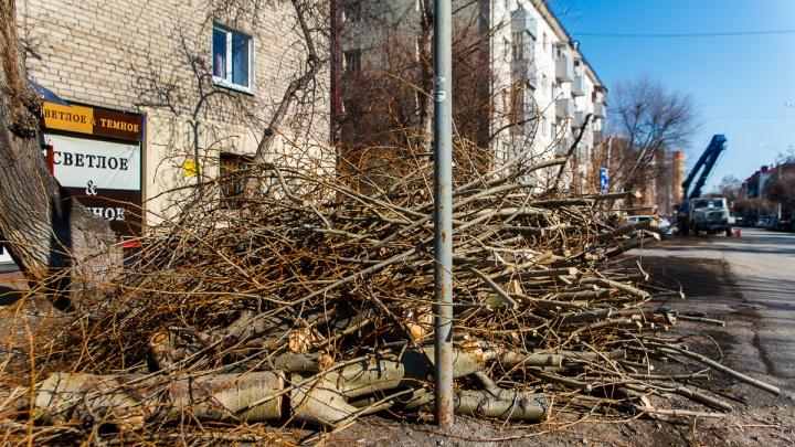 Где в Тюмени в 2021году будут рубить деревья. Карта