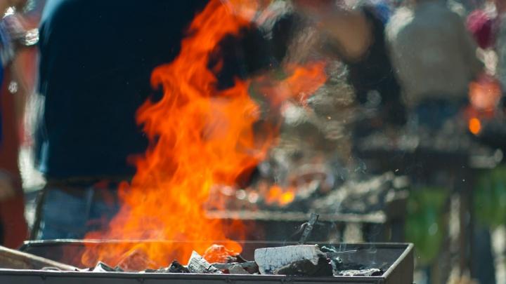 В Кургане временно запретят продажу угля и жидкости для розжига