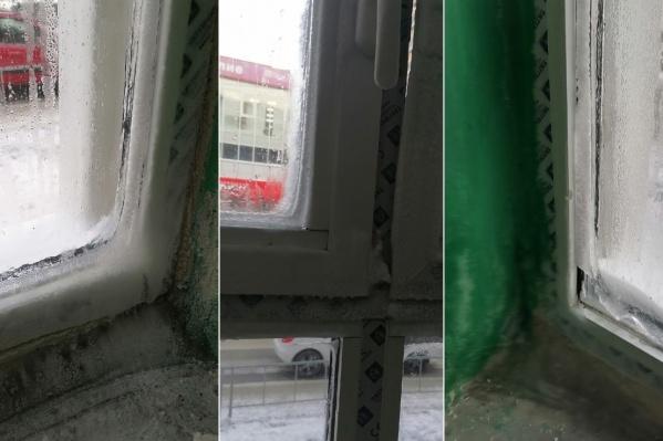 Практически все окна в доме обледенели после начала холодов