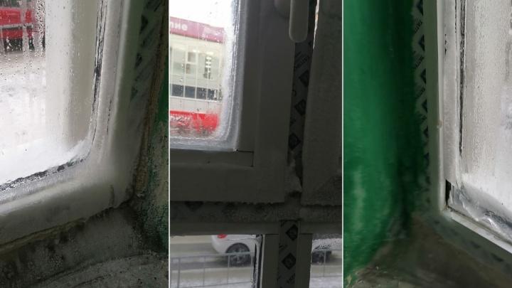 В общежитии на Фабричной обледенели новые окна, установленные во время капремонта