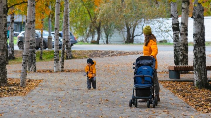 Если набережная уже наскучила. Смотрим, где еще погулять этой осенью, не выезжая из Архангельска