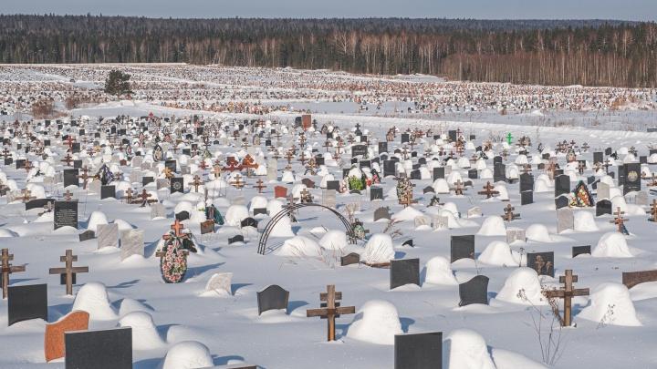 Площади Северного кладбища в Перми достигли пределов: его не будут расширять для новых захоронений