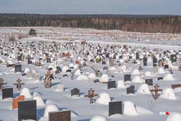Северное кладбище — одно из самых больших в России