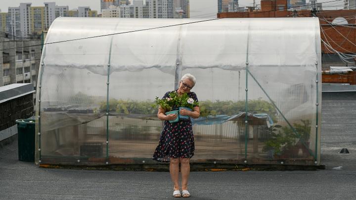 «В честь Путина и детей Пугачевой»: пенсионерка 50 лет выводит новые сорта цветов