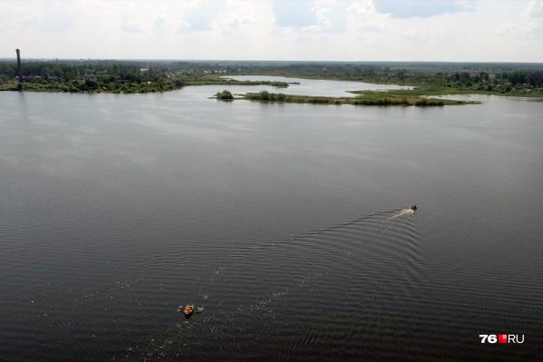 Завод на берегу водохранилища грозил погубить экосистему Волги
