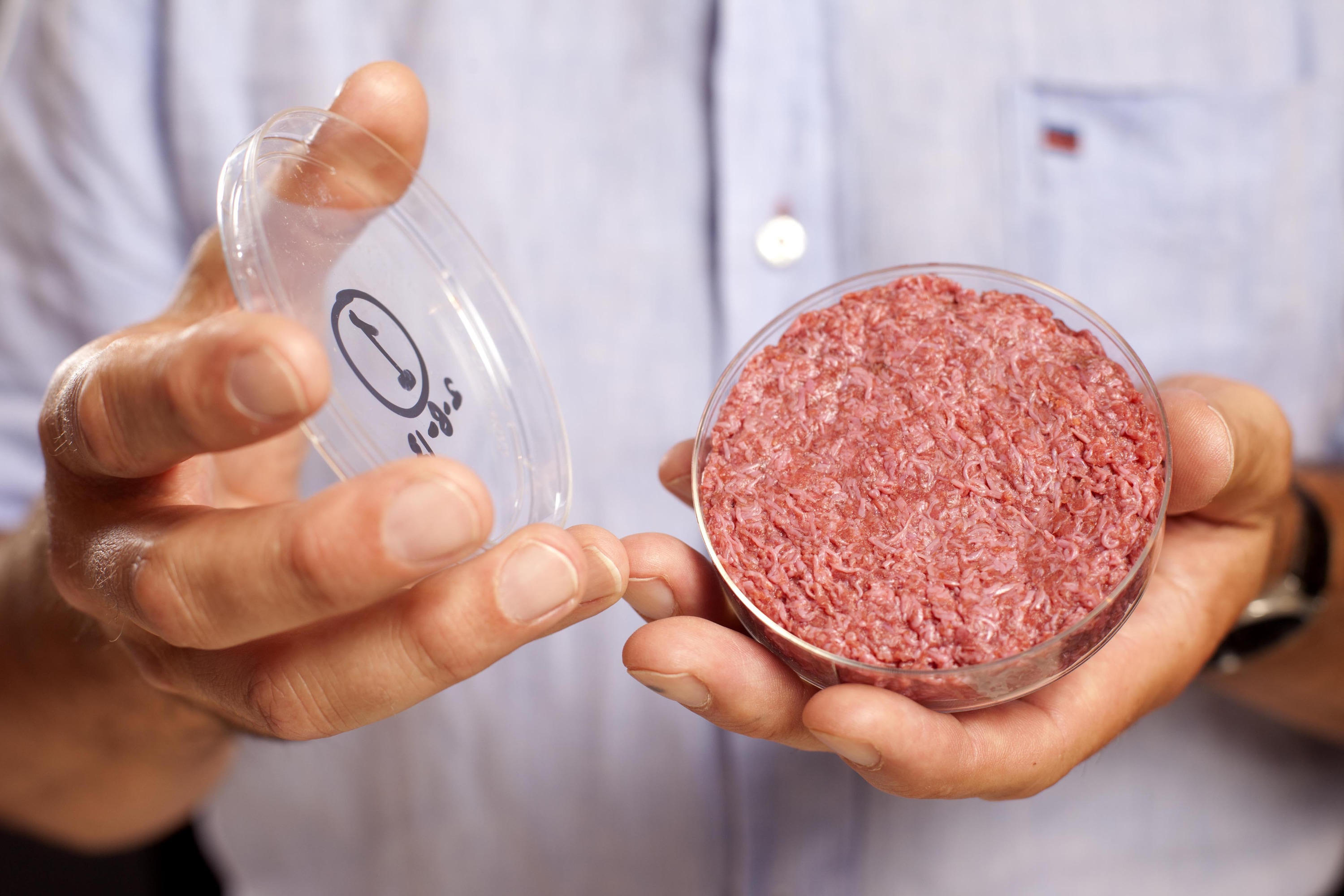Мясо в пробирке, немолоко и хлеб со сверчками. Смольный определился с ингредиентами и меню новой ОЭЗ на Парнасе