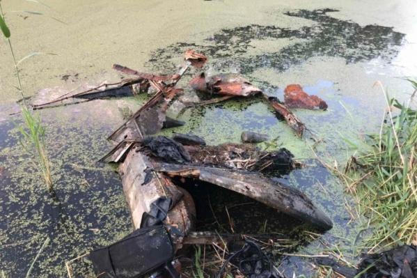 Машина пробыла в водоеме, судя по внешним признакам, не один год