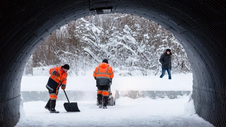 Мороз к выходным, метель — в будни: какая погода будет в Архангельске в начале февраля
