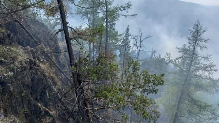 «Ввели пятый, самый высокий, класс пожароопасности»: в Башкирии второй день горит лес в районе Судовой горы