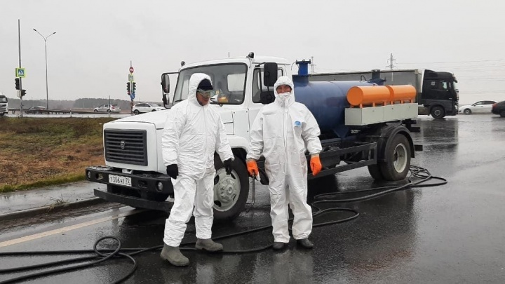 Режим ЧС. Всё про карантин и птичий грипп в Тюменской области — хроника