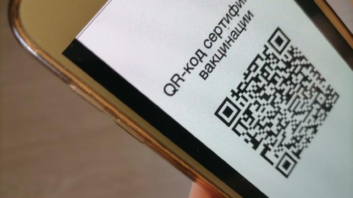 В Самарской области в ТЦ посетителей будут пускать по QR-кодам