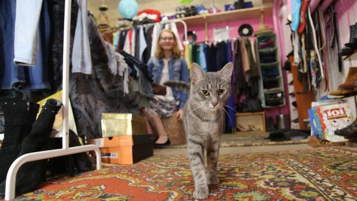 «Боялась казаться нищебродкой»: журналистка UFA1.RU — об одежде из секонд-хендов