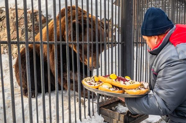 Медведям приготовили сладкие бутерброды