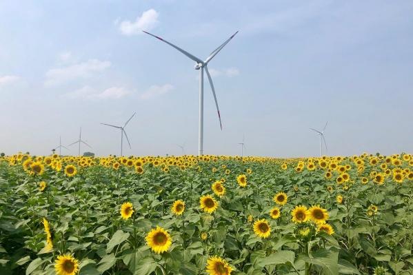 Вот так выглядят ветроустановки