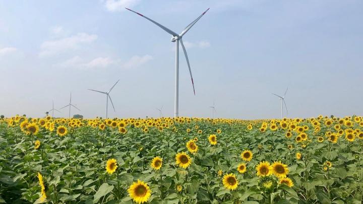 Для строительства ветроэлектростанций выбрали два села под Самарой