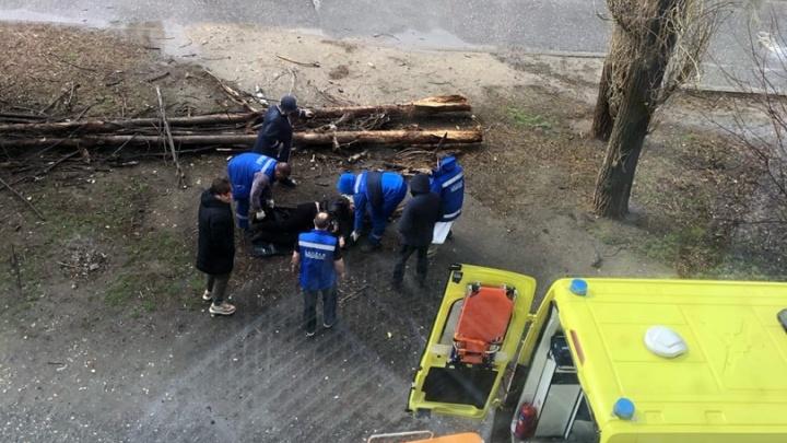 Последствия очень тяжелые: травмированная рухнувшим тополем в Волгограде женщина до сих пор в нейрохирургии