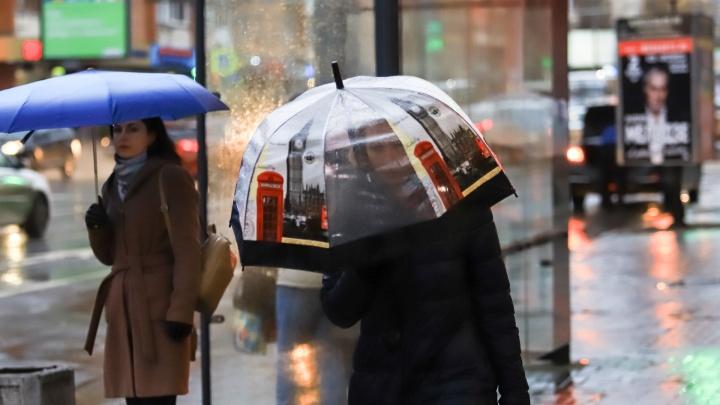 Как будто не январь: какая погода будет в Ростове на выходных