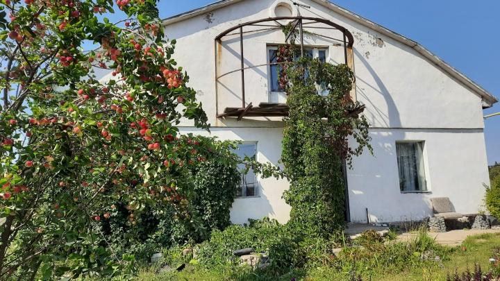 Сентябрь на даче: что надо обязательно сделать садоводам в начале осени