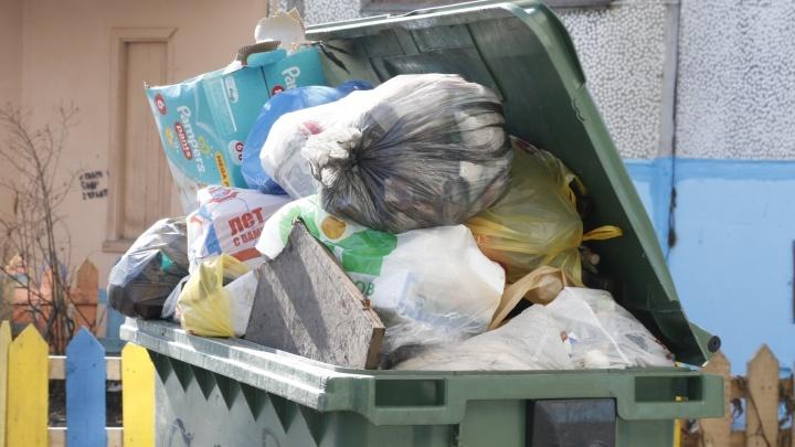 Временный норматив накопления мусора в Архангельской области признали завышенным