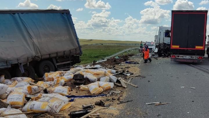 Кабину вывернуло: в Самарской области лоб в лоб столкнулись грузовики