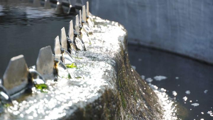 В Кузбассе выросли траты на охрану окружающей среды: на улучшение экологии власти потратили 12,5млрд