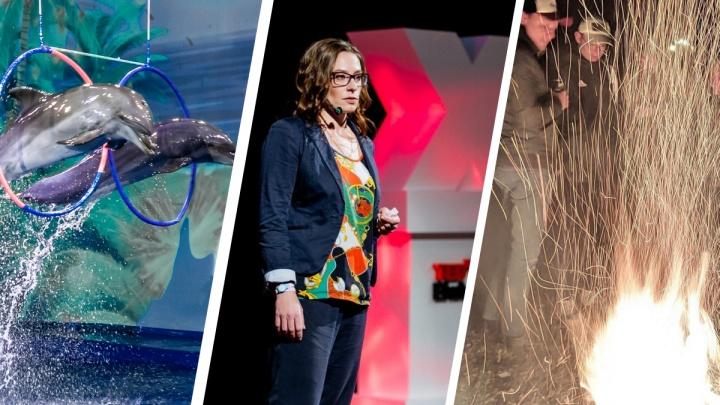 Масленица в стиле Burning Man, конференция Ted и джазовый фестиваль: 14 идей, чем заняться в выходные