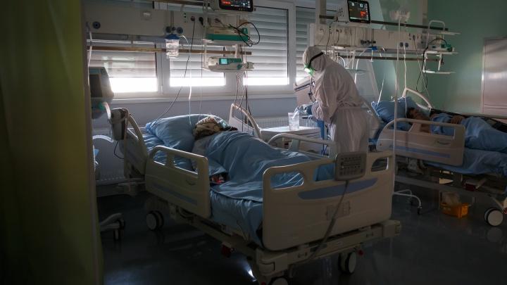 «Вирус имеет агрессивный характер»: в Волгограде и области COVID-19 подтвержден еще у 317 человек. Девять умерло