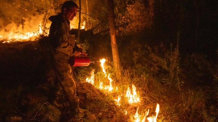 Спасатели сожгли 100 гектаров леса, чтобы остановить мощный пожар под Екатеринбургом: фото
