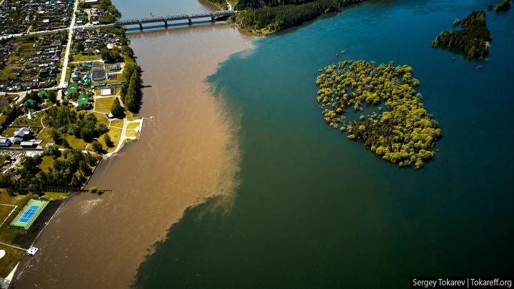 «Коренные воды»: глава района исключил промышленную причину загрязнения Маны и Енисея