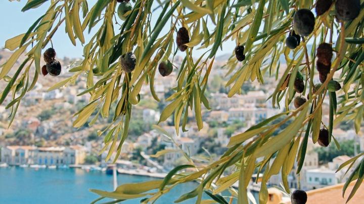 Отпуск в пандемию: правила въезда в Грецию в2021году
