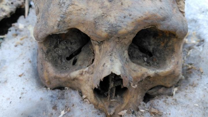 Мешки с человеческими костями обнаружены на стройке в Нижегородском кремле