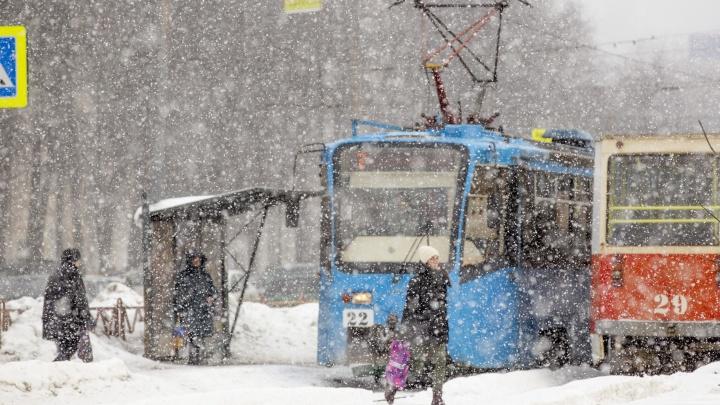 «Зима надолго»: синоптики рассказали о погоде на 8 Марта