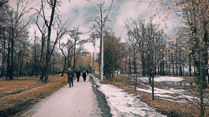 Мэр Екатеринбурга выступил против закрытия парка на берегу Городского пруда