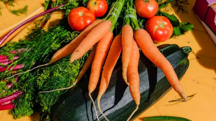 В Перми пройдут две ярмарки с фермерскими продуктами