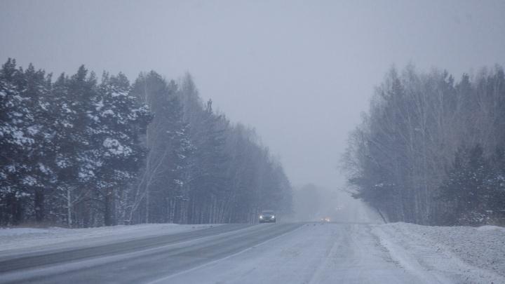 В Тюменской области портится погода— надвигается сильный ветер