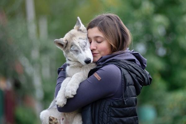 У Фокса обнаружили глаукому, из-за чего собаке пришлось удалить глаза