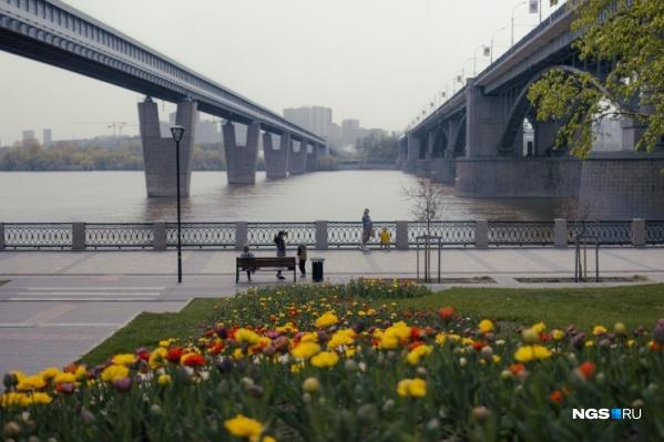 На следующей неделе в Новосибирске ненадолго спадет жара