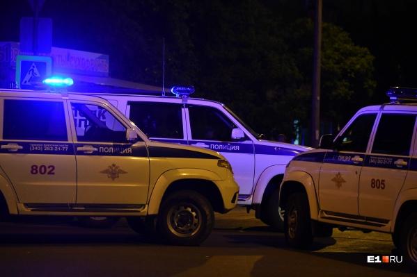 Полиция взяла под стражу троих жителей Челябинской области